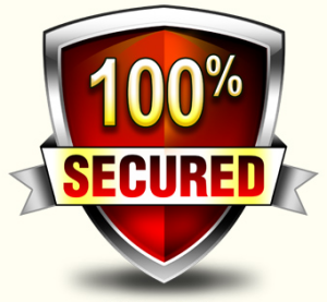 Our data recovery services are guaranteed 100% secure